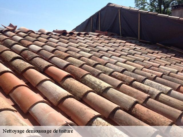 Entreprise de nettoyage demoussage de toiture à La Calmette tel: 04.82.29.41.76